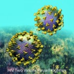 Two HIV Particles