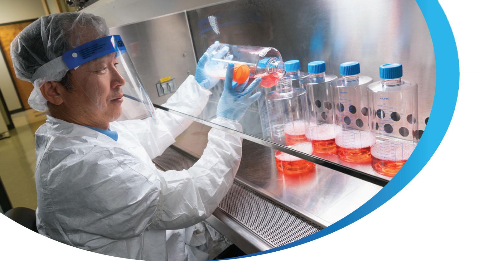 Cell Culture Development